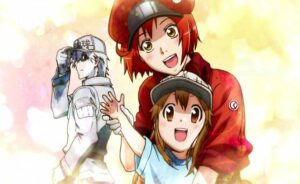 Cells at work Season 2 Updates